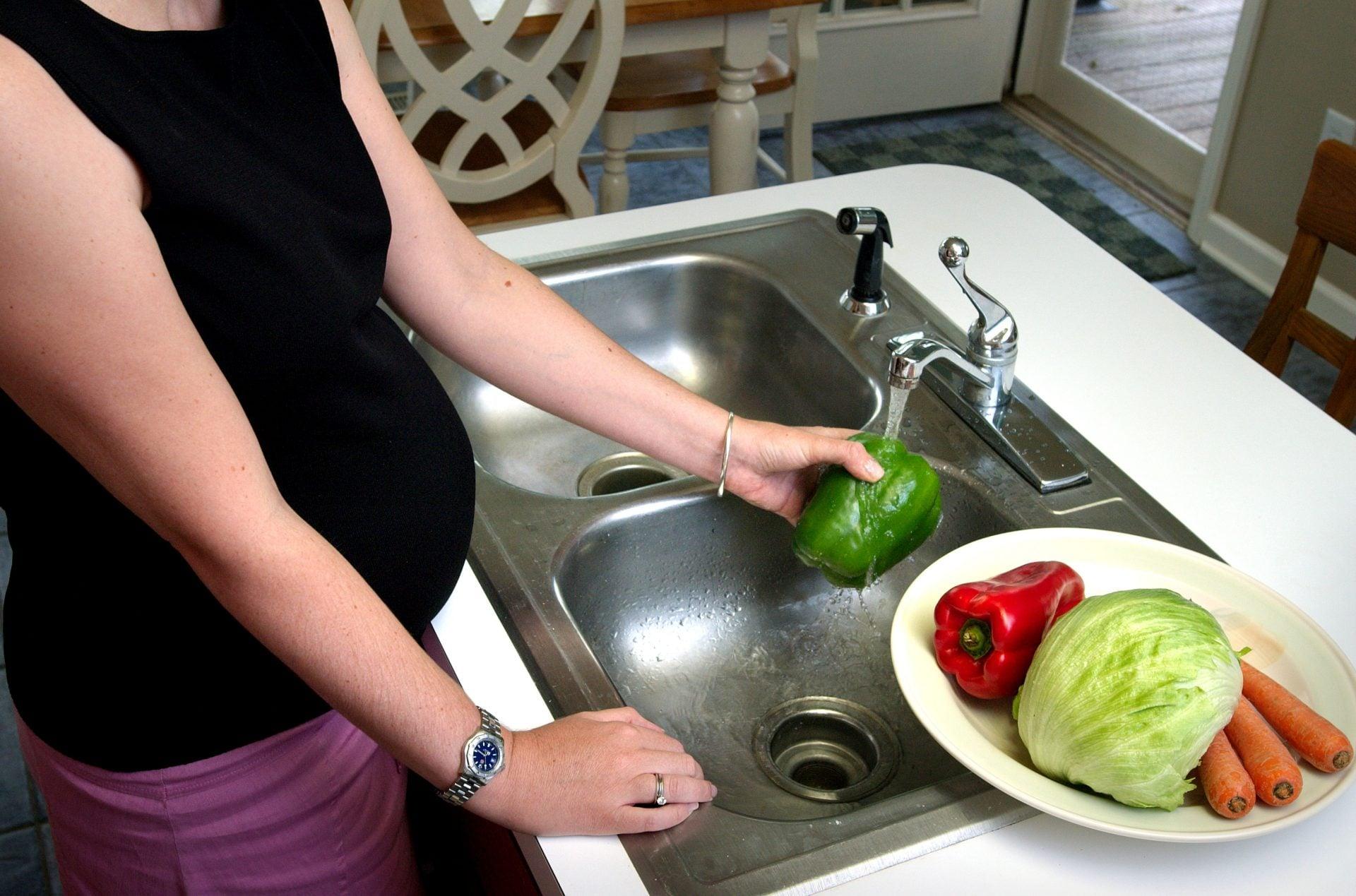 pregnancy diet nutrition
